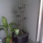 IMG-20120329-01463
